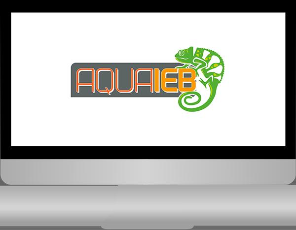 Aqua IEB